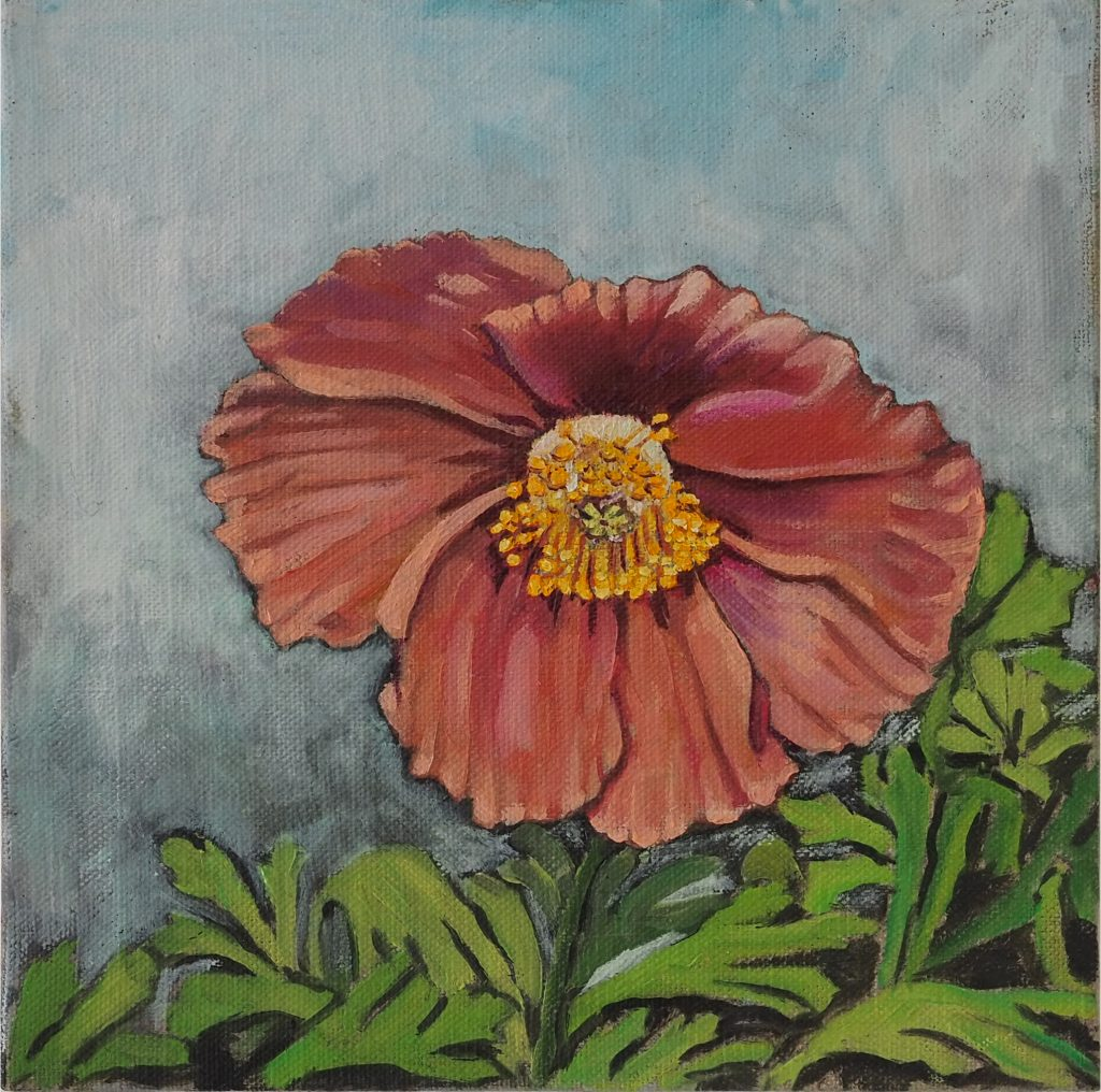 Lonely Poppy 20x20cm oil on linen board $220