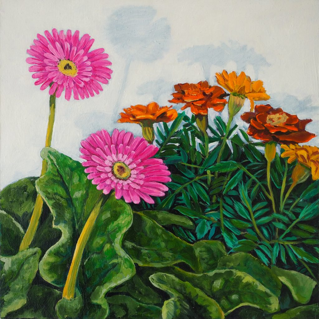 Gerbera 'n' Marigold Cascade 25x25cm oil on board $300